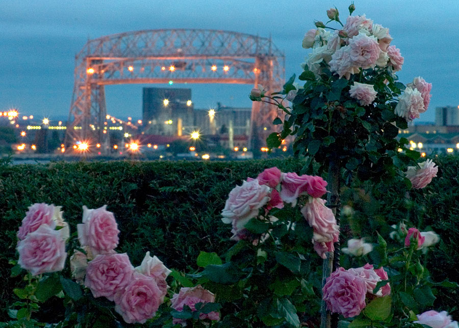 Tonyrogers Com Duluth Rose Garden At Night August 2006